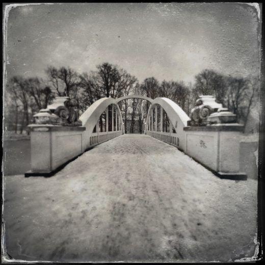 Project 365/2021 - fot. Bogdan Krupiński